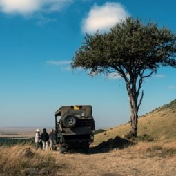 Safari / Game Drive Services